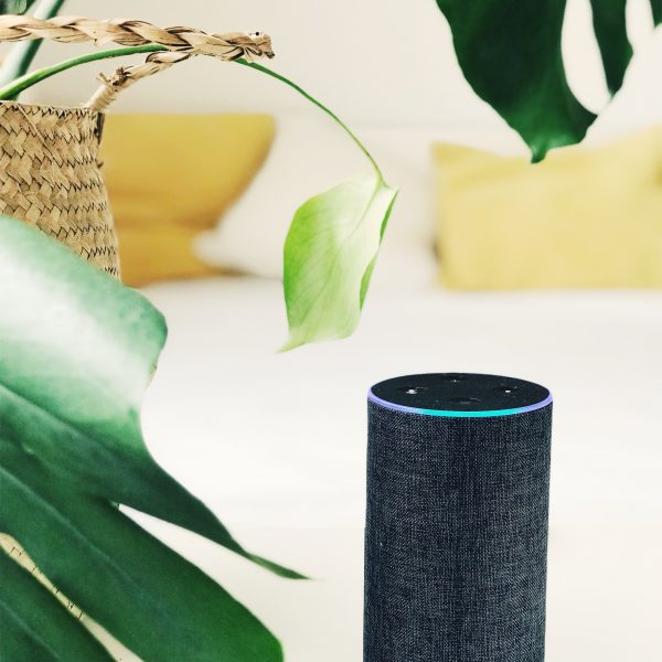 Alexa-powered gadgets