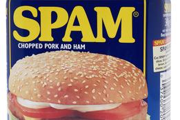 #pwned, #pharming, #phishing, #phreaking, #Trojan Horse, #organic, #churn, #spam