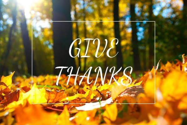 Give Thanks in the foreground of a pile of shimmering gold, lemon yellow, garden green, pumpkin orange and crimson red autumn leaves
