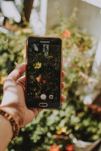 A Hand holding a cell phone against a blurred floral background.